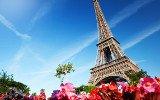 Citations France et français