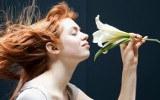 Citations Odeur et odorat