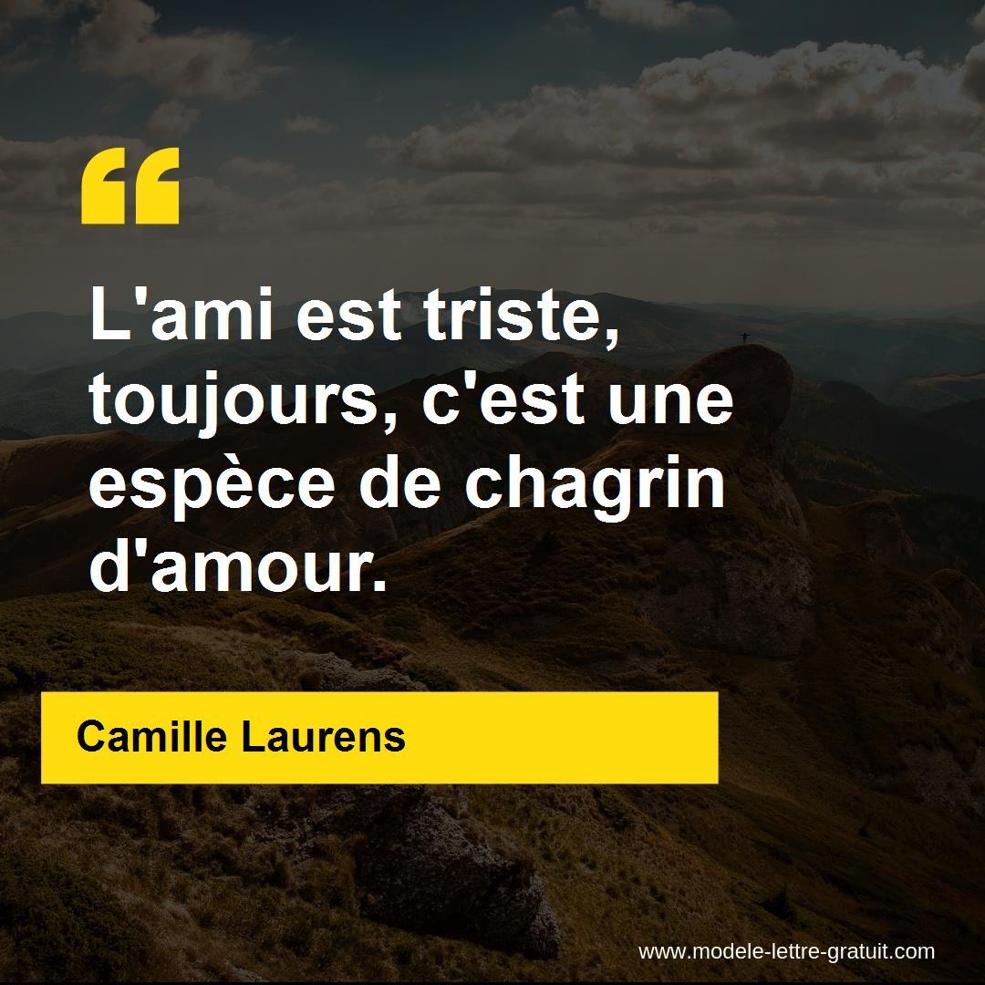 Lami Est Triste Toujours Cest Une Espèce De Chagrin Damour